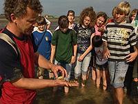 Torsten Moschner erklärt Jugendlichen das Watt