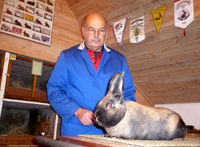 Der Kaninchenzüchter