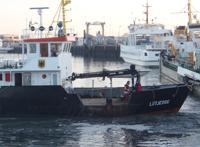 Lüttje Oog im Hafen