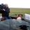 Mit offenem Verdeck auf der Suche nach Gänsen - Jan Bruins begleitet Landwirt Arnold Venema.