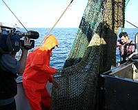 An Bord des Krabbenkutters
