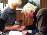 Irmgard und Reinhold mit Huhn
